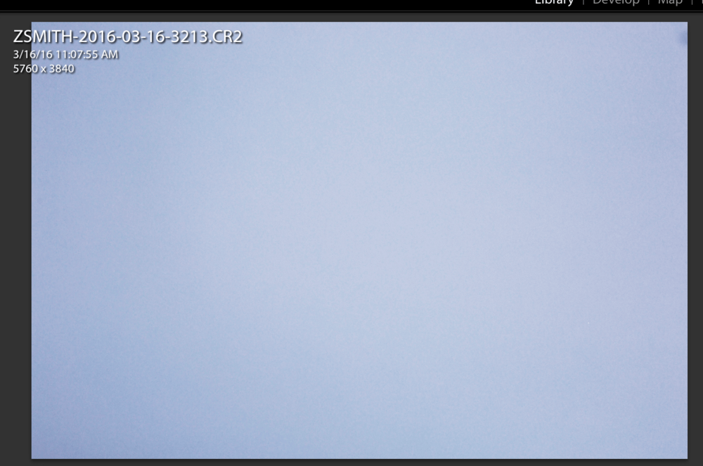 A full screen capture of my roll background. I will use this later when placing the final portraits
